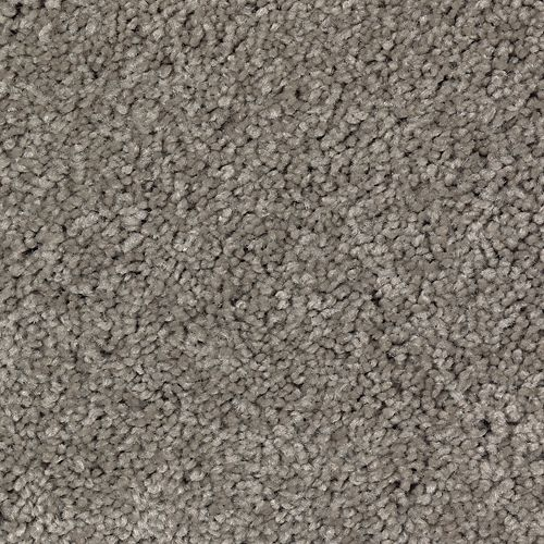 Appealing Endeavor Shadow Taupe 502