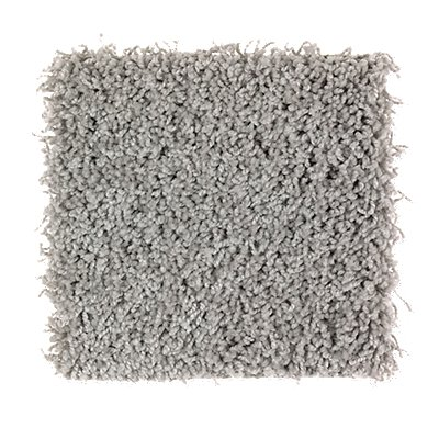 Precious Expression in Steel Border - Carpet by Mohawk Flooring
