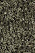 Mohawk Tender Moment - Mossy Border Carpet