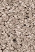 Mohawk Tender Moment - Uptown Taupe Carpet