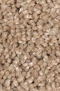 Mohawk Tender Moment - Cedar Shingles Carpet