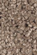 Mohawk Tender Moment - Driftwood Carpet