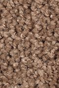 Mohawk Tender Moment - Pine Cone Carpet