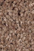 Mohawk Tender Moment - Monks Hood Carpet