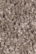 Mohawk Tender Moment - Cobble Path Carpet