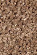 Mohawk Tender Moment - Rich Maple Carpet
