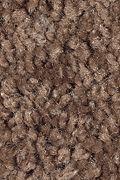 Mohawk Tender Moment - Hot Chocolate Carpet