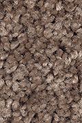 Mohawk Tender Moment - Thoroughbred Carpet