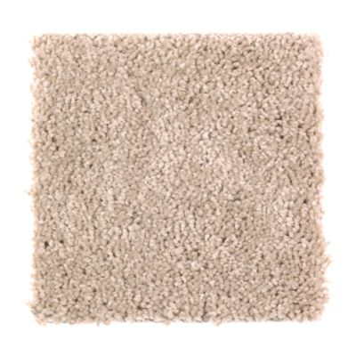 ProductVariant swatch small for Pecan Shell flooring product