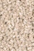 Mohawk Sweet Reflection - Safari Tan Carpet
