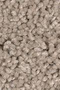 Mohawk Sweet Reflection - Stone Sculpture Carpet