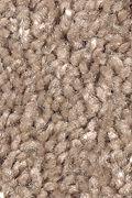 Mohawk Sweet Reflection - Brown Sugar Carpet