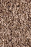 Mohawk Sweet Reflection - Pine Cone Carpet