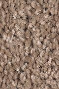 Mohawk Sweet Reflection - Monks Hood Carpet