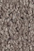Mohawk Sweet Reflection - Cobble Path Carpet