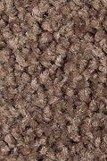 Mohawk Sweet Reflection - Hot Chocolate Carpet