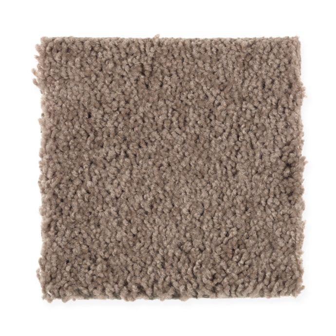 Natural Decoration Dried Peat 858