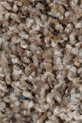 Mohawk Revealing Beauty - Natures Blend Carpet