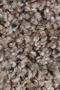 Mohawk Revealing Beauty - Driftwood Carpet