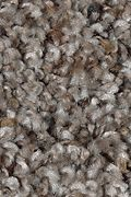 Mohawk Revealing Beauty - Mountain Top Carpet