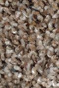 Mohawk Design Portrait - Natures Blend Carpet
