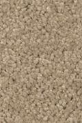 Mohawk Natural Splendor I - Brushed Suede Carpet