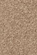 Mohawk Natural Splendor I - Spiced Tea Carpet