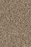 Mohawk Natural Splendor I - Urban Taupe Carpet