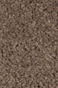 Mohawk Natural Splendor I - Rich Earth Carpet