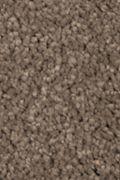 Mohawk Natural Splendor I - Pine Cone Carpet