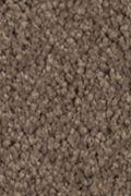 Mohawk Natural Splendor I - Nutmeg Carpet