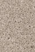 Mohawk Natural Splendor I - Overcast Carpet