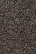 Mohawk Natural Splendor I - Wrought Iron Carpet