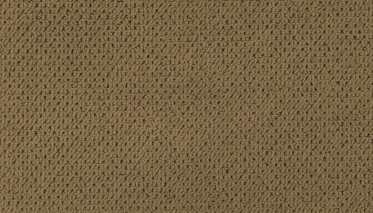 Organic Splendor Brushed Suede 511