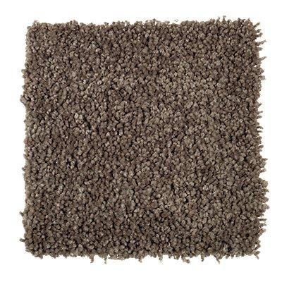 Rare Details in Urban Bronze - Carpet by Mohawk Flooring