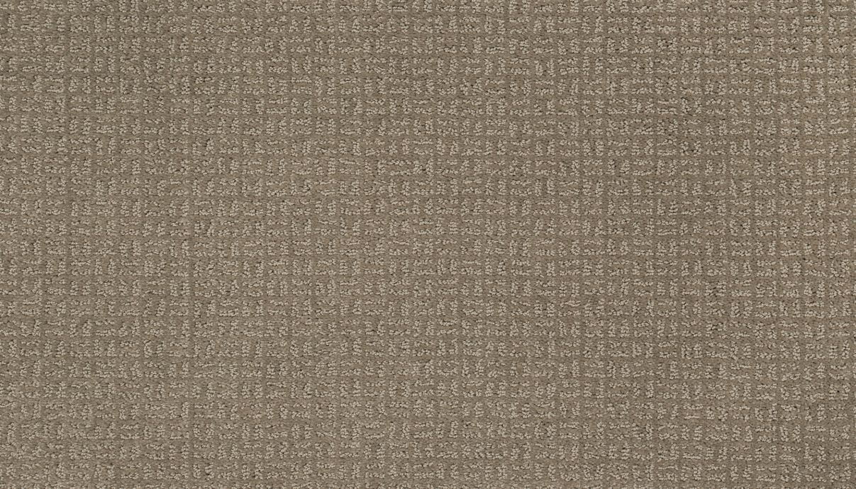 Pristine View Taupe Shadow 829