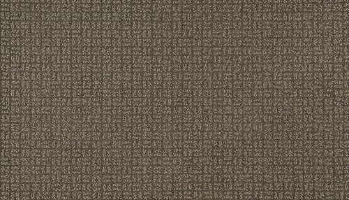 Pristine View in Twilight Jungle - Carpet by Mohawk Flooring