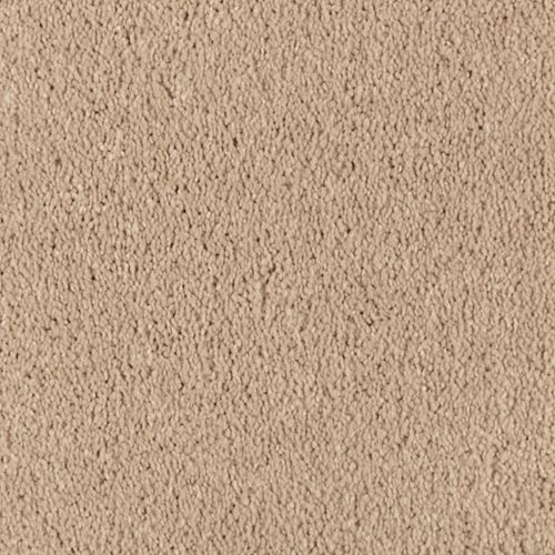 Natural Splendor II Maple Tint 503