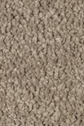 Mohawk Natural Splendor II - Mushroom Cap Carpet