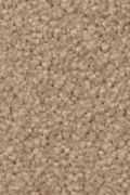 Mohawk Natural Splendor II - Spiced Tea Carpet