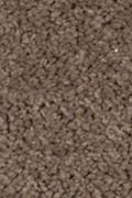 Mohawk Natural Splendor II - Rich Earth Carpet