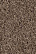 Mohawk Natural Splendor II - Nutmeg Carpet