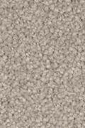 Mohawk Natural Splendor II - Mineral Grey Carpet