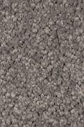Mohawk Natural Splendor II - Evening Shadow Carpet