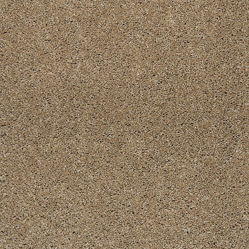 Native Allure I Hearth Beige 518