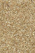 Mohawk Natural Refinement I - Mushroom Cap Carpet