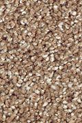 Mohawk Natural Refinement I - Spiced Tea Carpet