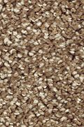 Mohawk Natural Refinement I - Rich Earth Carpet