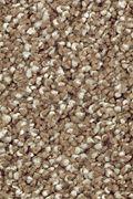 Mohawk Natural Refinement I - Pine Cone Carpet
