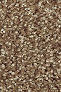 Mohawk Natural Refinement I - Nutmeg Carpet